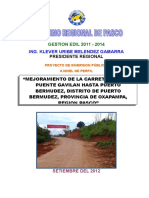 Resumen Ejecutivo - Pip Carretera Gavilan Pto Bermudez