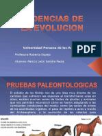 Sen 03 Pruebas de Evolucion