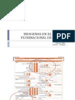 INDIGENAS EN EL ESTADO PLURINACIONAL DE BOLIVIA.pdf