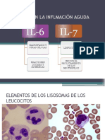 Citocinas en La Inflmación Aguda