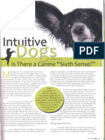 Intuitive Dogs Article Scan
