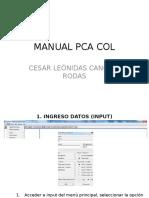 MANUAL PCA COL.pptx