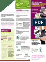 DiabetesObesidad.pdf
