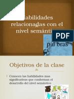 Nivel Semantico 3 (1)