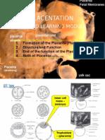 Placentation Flm 2009