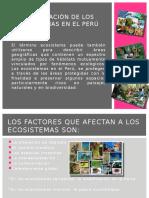 Conservación de Los Ecosistemas en El Perú