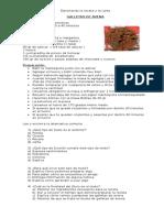 Ejercitando la receta y la carta.doc
