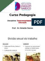 Divisão Social e Sexual Do Trabalho (3)
