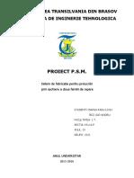 Proiect Proiectarea Sistemelor de Masini