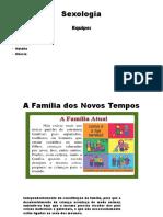 A FAMÍLIA DOS NOVOS TEMPOS.pptx