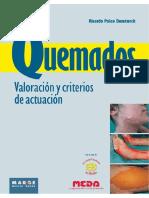 Quemados Valoración y Criterios.pdf