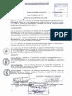 Resolución municipal practicas preprofesionales Lince Lima Perú