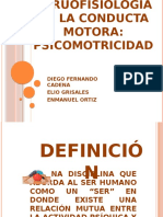 neurofisiologia de la conducta motora psicomotricidad