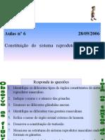 aula_6