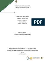 Colaborativo Fase 3 instrumentacion