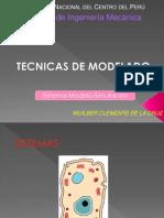 tECNICA DE MODELADO.pdf