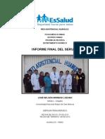137140489-Informe-Final-Serums-2012.doc