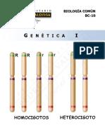 Bc10 15 Genética i Web
