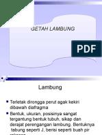 GETAH LAMBUNG