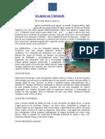 a-importancia-da-agua-na-umbanda - Copia (3) - Copia.docx