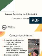 Animal Behavior Restraint