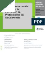 Lineamientos Mejora Formac Profesionales en SM 2015-11