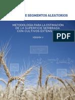 Metodo de Segmentos Aleatorios Version5