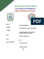CUENTAS AMBIENTALES (1)