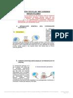 Recepciã n Celular Mecanismos Moleculares Expo.docx (1)