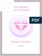 4. the Master Syon Cleanse eBook