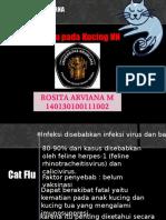 CAT FLU.ppt