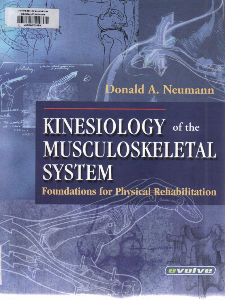 Donald a. Neumann-Kinesiology of the Musculoskeletal System | Anatomical  Terms Of Motion | Physical Therapy