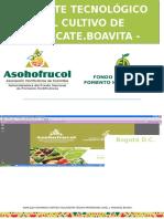 Paquete Tecnologico Aguacate Boavita