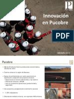1-Sebastián-Ríos-Gerente-General-Pucobre.pdf