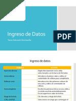 02_IngresoDatos (1).pdf
