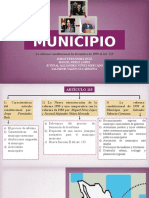Art. 115 Reforma Constitucional de 1999 Municipio