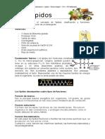 Lipidos Informe Lab