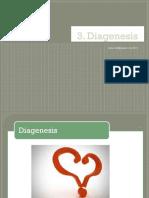 3.-diagenesis