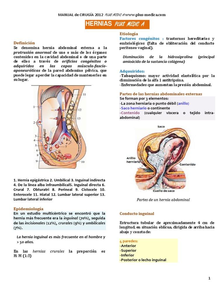 Excelente Indirecta La Anatomía De La Hernia Inguinal Motivo ...