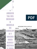 Analisis de Impacto Ambiental y Recuperacion Del Mercado Modelo