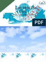 Derecho Procesal Civil Expo Dalii 3 Parcial