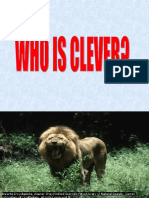 Who is Clever