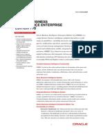 bi-enterprise-edition-plus-ds-078848.pdf