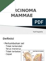 Carcinoma Mammae Yudi Nugraha