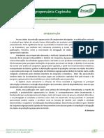 BRT Boletim da Conjuntura Agropecuaria n.4 Incaper 1