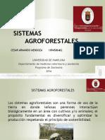 Sistemas Agrofor..