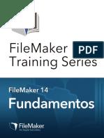 Manual Fts Basics Fm14 Es