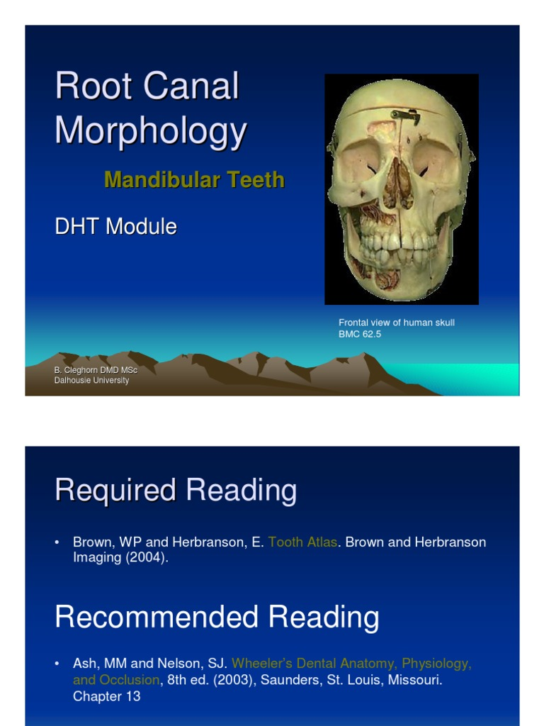 Fantastisch Wheelers Dental Anatomy Physiology And Occlusion ...