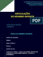 Slides - Teorica 5 - Articulações Dos Membros Inferiores