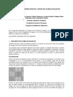 Informe Pato Clinica